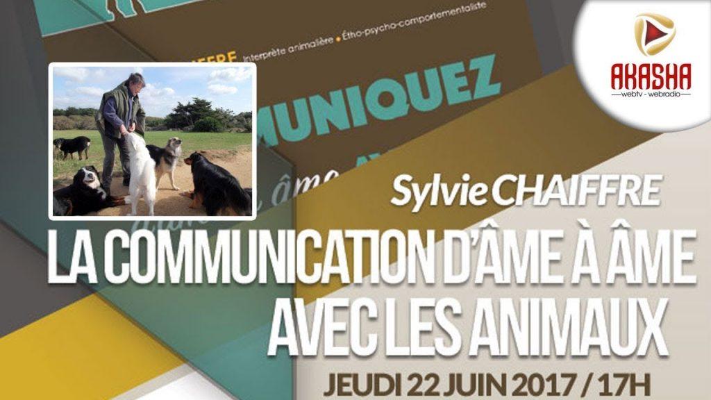 Sylvie CHAIFFRE | La communication avec les animaux d'âme à âme