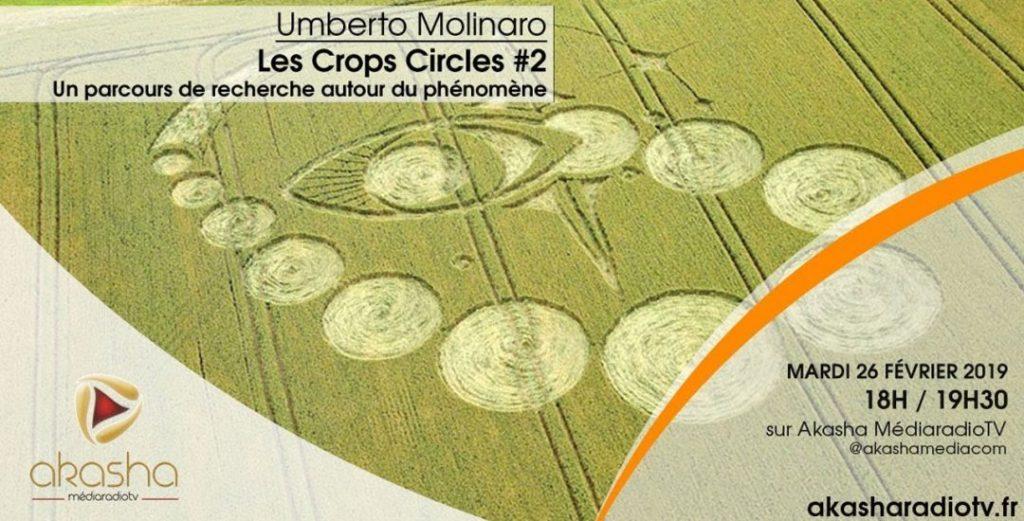 Umberto Molinaro   Les crops circles #2, recherches et hypothèses