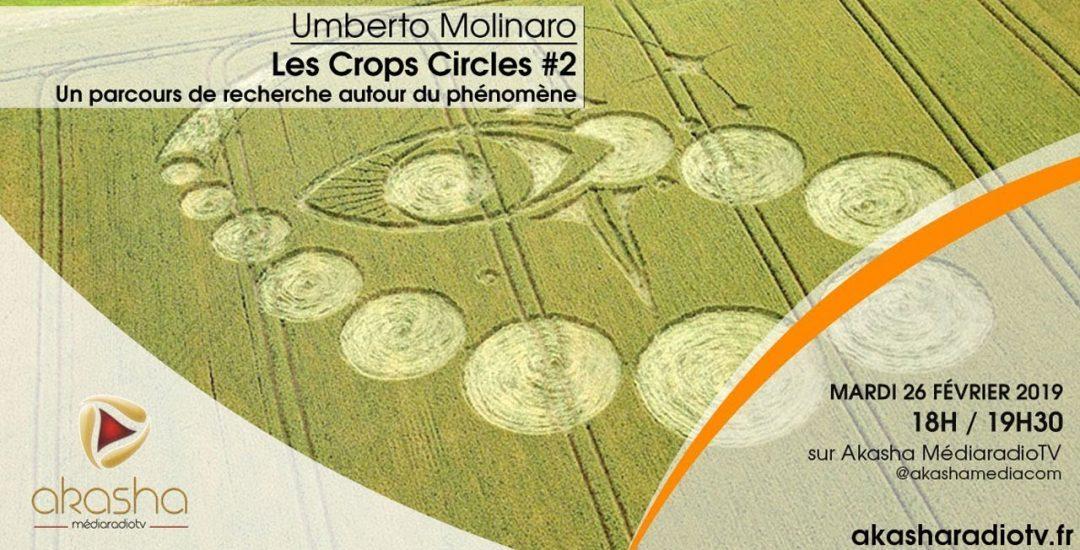 Umberto Molinaro | Les crops circles #2, recherches et hypothèses