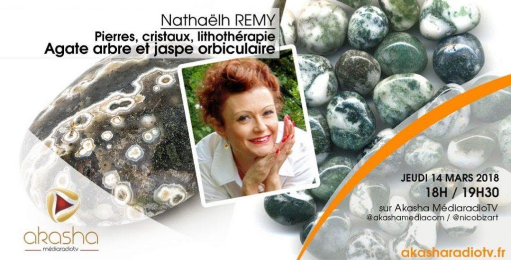Nathaëlh Remy   Agate d'arbre et jaspe orbiculaire