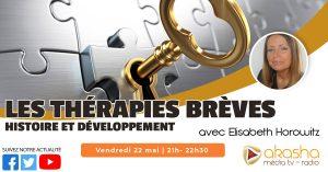 Les thérapies brèves, histoire et développement